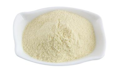 China Food Grade  Digestive Enzyme Powder 99% Purity For Protein Hydrolysis supplier