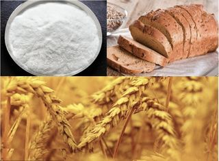 China Xylanase for wheat flour and baking, food additives supplier