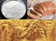 China Xylanase for wheat flour and baking, food additives company