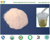 Invertase for sucrose convert and syrup preparation, food additives
